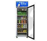 自助售货冰柜